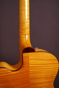 Andersen Stringed Instruments Vanguard Custom Guitars